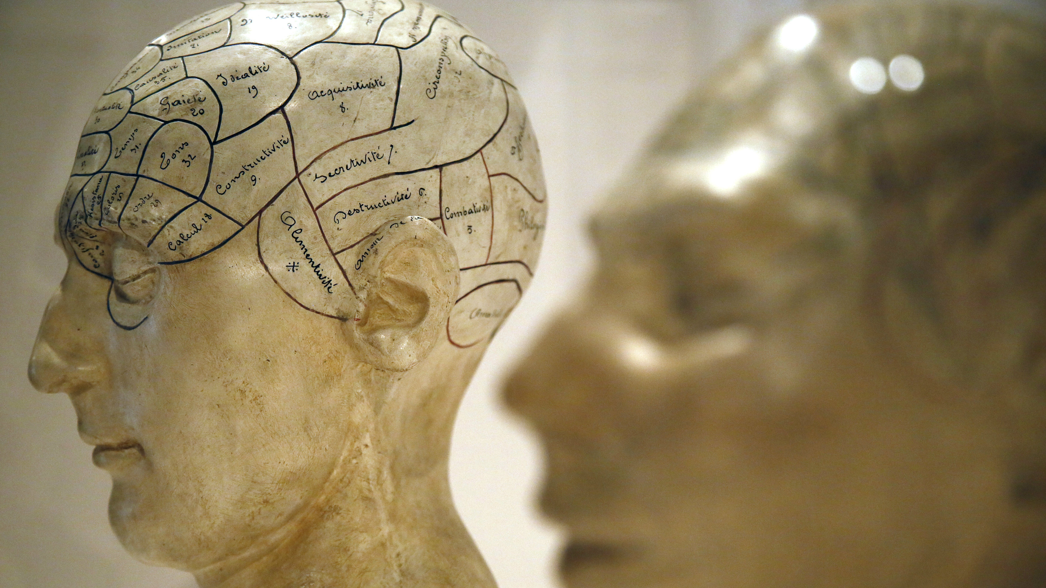 Modifying the mind for a more productive life.