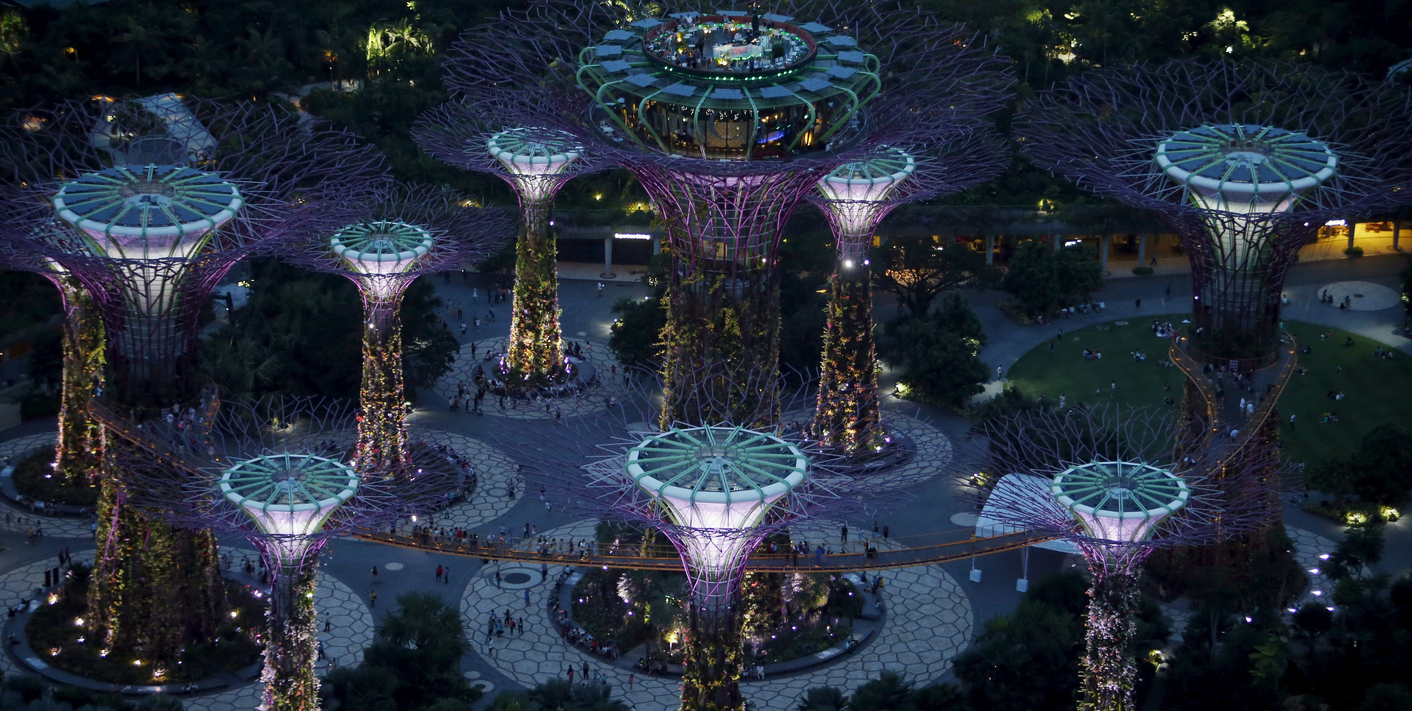 Visitors dine on a rooftop restaurant on top of a Supertree in the Gardens by the Bay, Singapore, July 16, 2015. When Singapore celebrated its 50th birthday as an independent country in August,the city state bore little resemblance to the tiny island nation that was expelled from Malaysia in 1965. Its physical stature has swollen by 20 percent thanks to one of the world's most aggressive land reclamation drives.