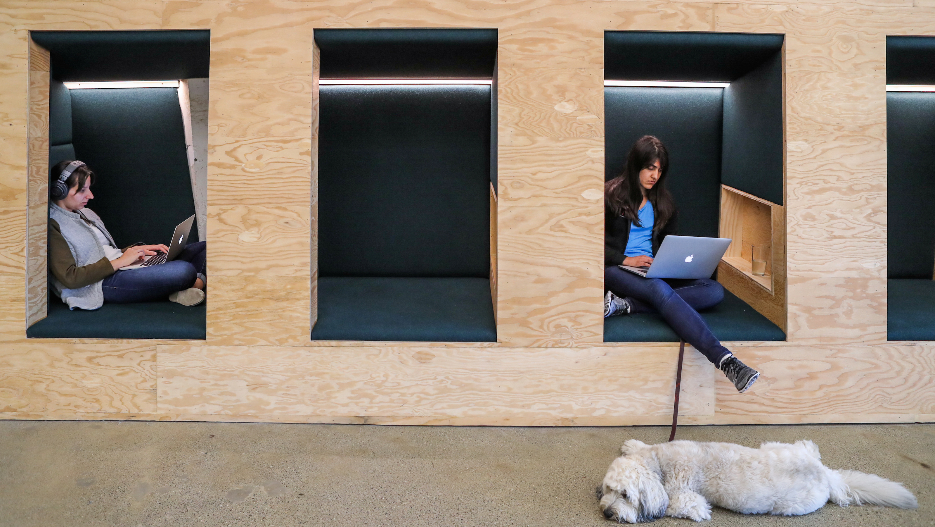 People work in cubes with their Apple computers at the Airbnb office headquarters in the SOMA district of San Francisco, California, U.S., August 2, 2016.   REUTERS/Gabrielle Lurie - RC1AD100DB10