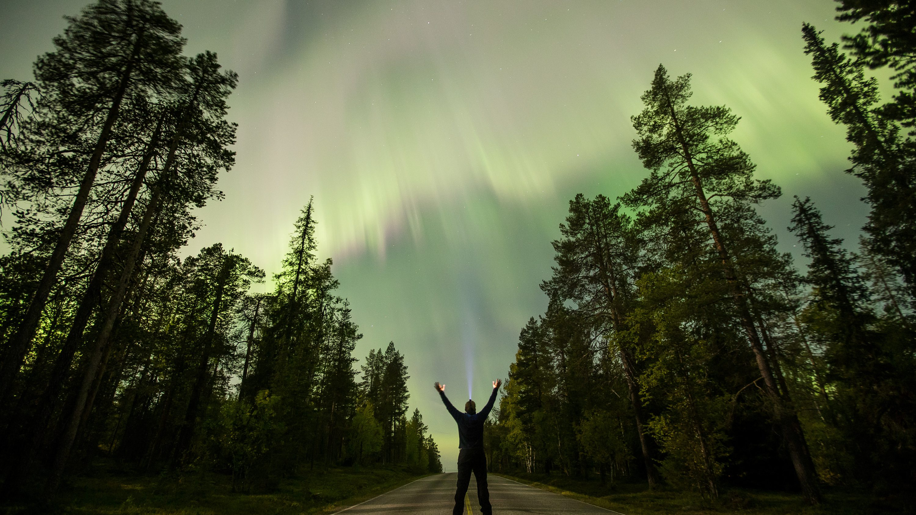 The Aurora Borealis (Northern Lights) is seen over the sky near the village of Pallas (Muonio region) of Lapland, Finland September 8, 2017.