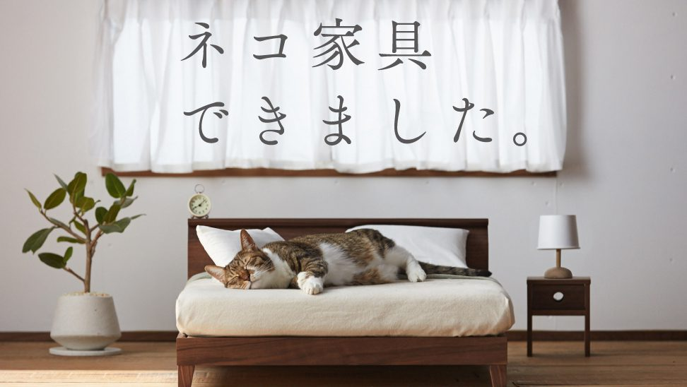 Fukuoka Artisan Advertising Campaign: Japanu0027s Love Affair With Cats Has  Produced A Line Of Designer Feline Furniture U2014 Quartz