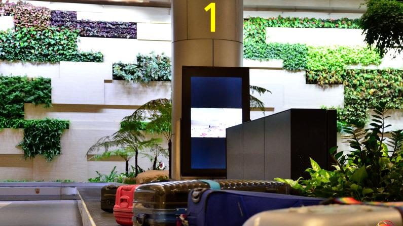 Terminal 4 at Singapore's Changi Airport.