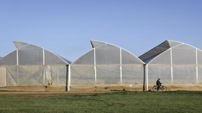 Tremendous New Greenhouse Technology Can Grow Food And Generate Home Remodeling Inspirations Genioncuboardxyz