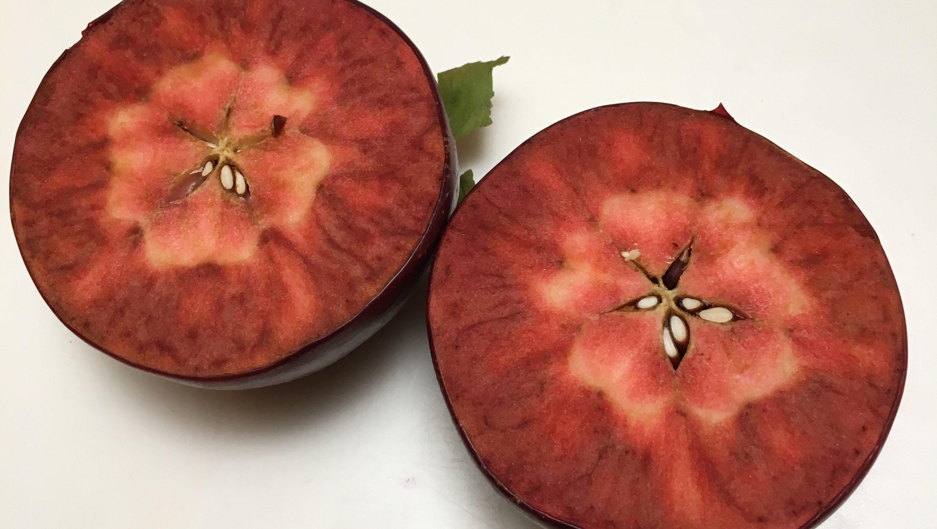 A Niedwetzkyana apple.