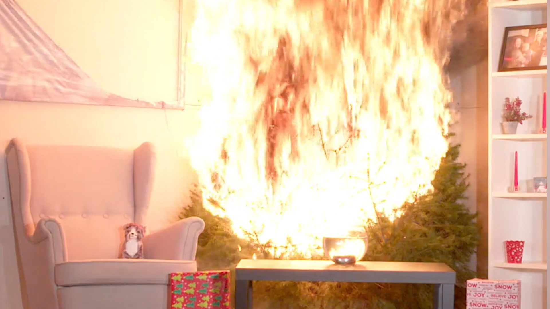 Here's what can happen when your dry Christmas tree catches fire.