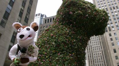 "The Pets.com Sock Puppet makes an appearance near Jeff Koons' ""Puppy"" in Rockefeller Plaza, Thursday, June 8, 2000"