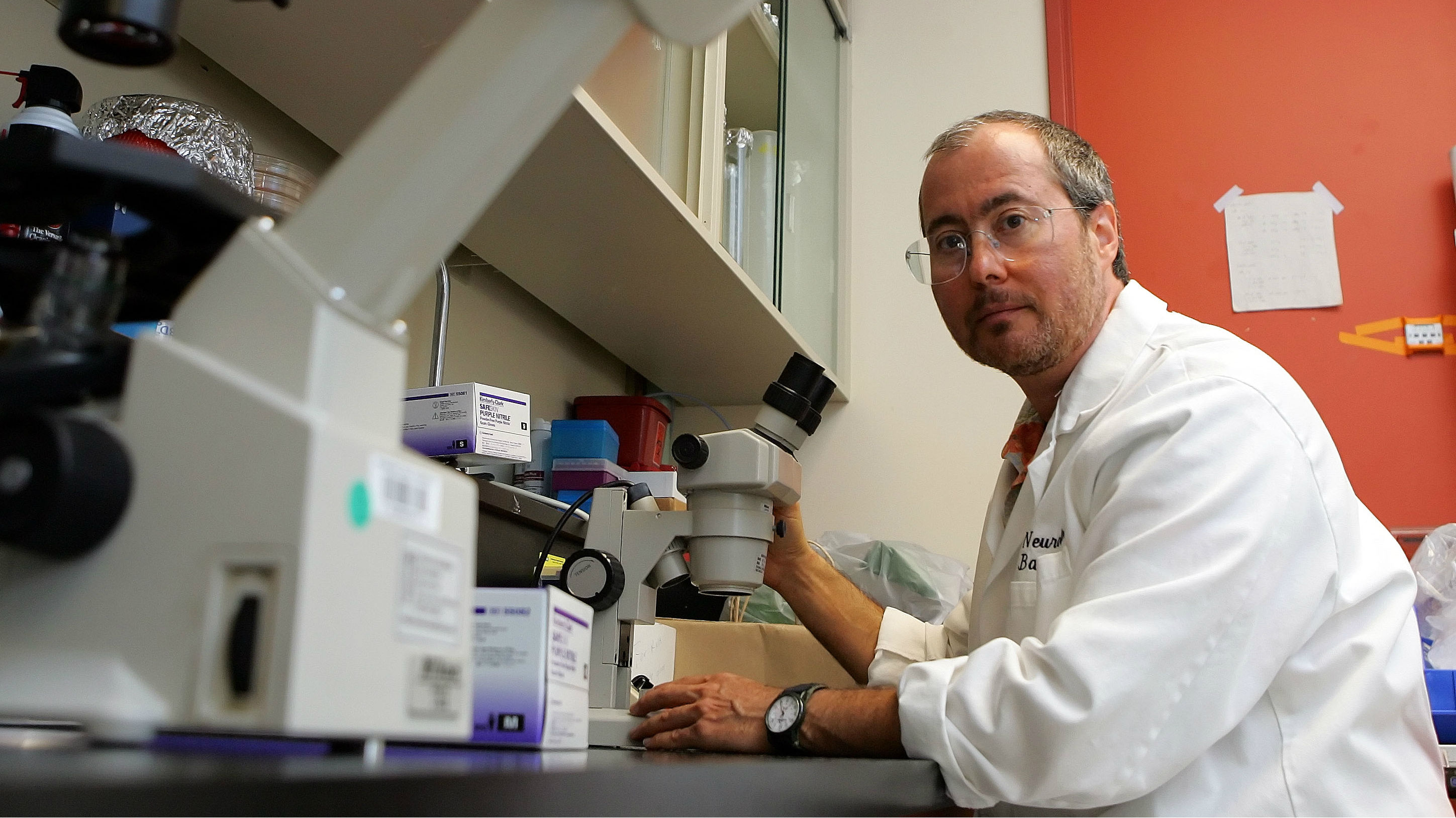 Ben Barres, the trans neurobiologist who created the field of study for glial cells.