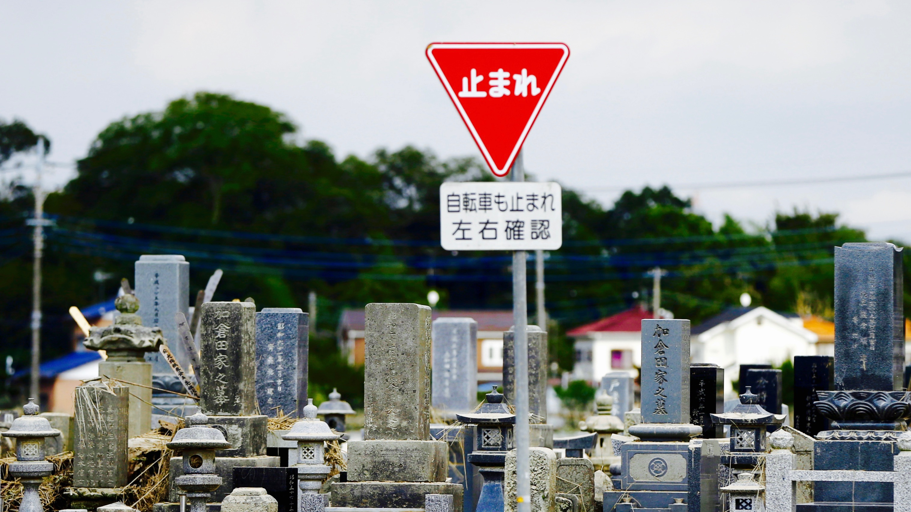 Stop sign by a cemetery in Japan.