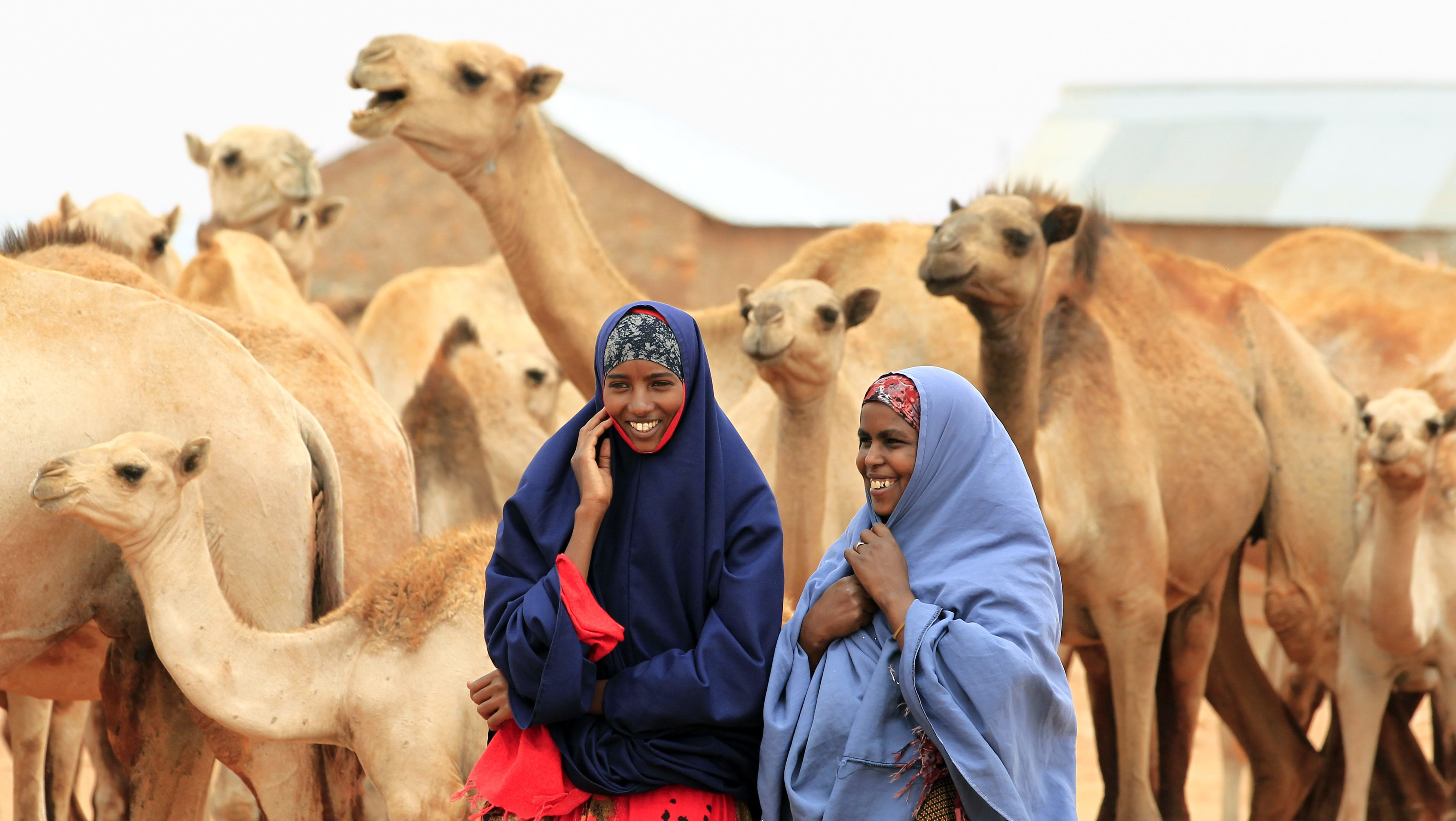 Somali women talk as their drought-stricken camels wait for their turn to drink water from a tank near Harfo, 70 km from Galkayo northwest of Somalia's capital Mogadishu, July 20, 2011. The United Nations on Wednesday declared famine in two regions of southern Somalia, and warned that this could spread further within two months in the war-ravaged Horn of Africa country unless donors step in.