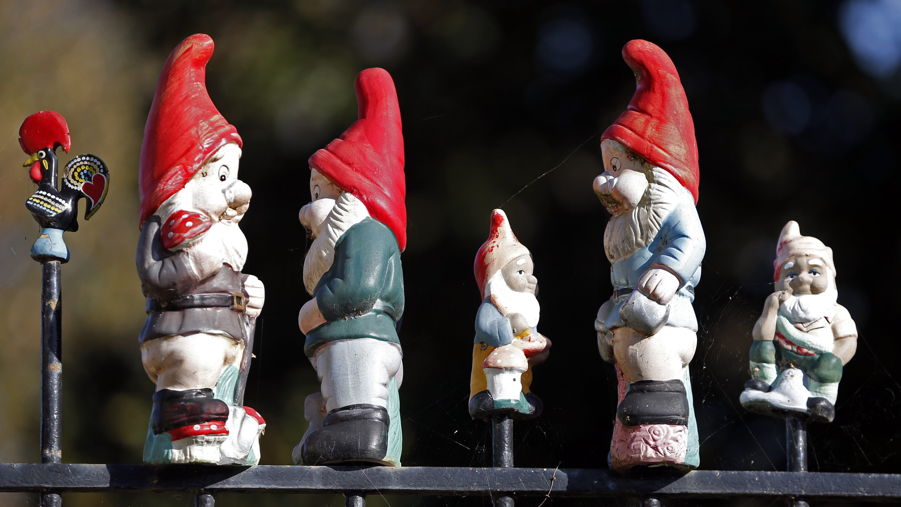 Garden gnomes are seen on the fence of a house in Chateau Thierry November 11, 2014. REUTERS/Charles Platiau (FRANCE - Tags: SOCIETY) - GM1EABC0M2101