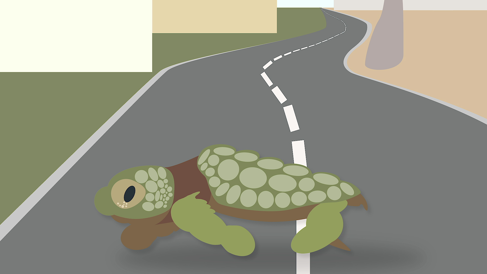 Why did the sea turtle cross the road? Because it got distracted by man-made light and now it's dead.