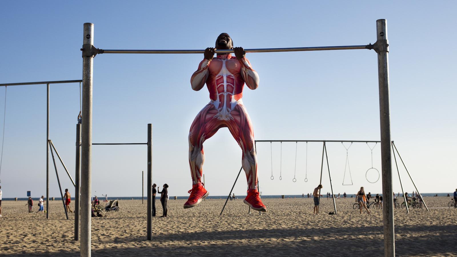 Best Workout Program For Muscle Gain Reddit   sport1stfuture org