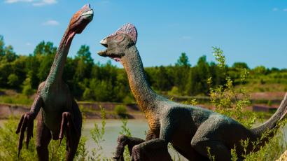 An artist's rendition of two large dinosaurs with elaborate head ornamentation.