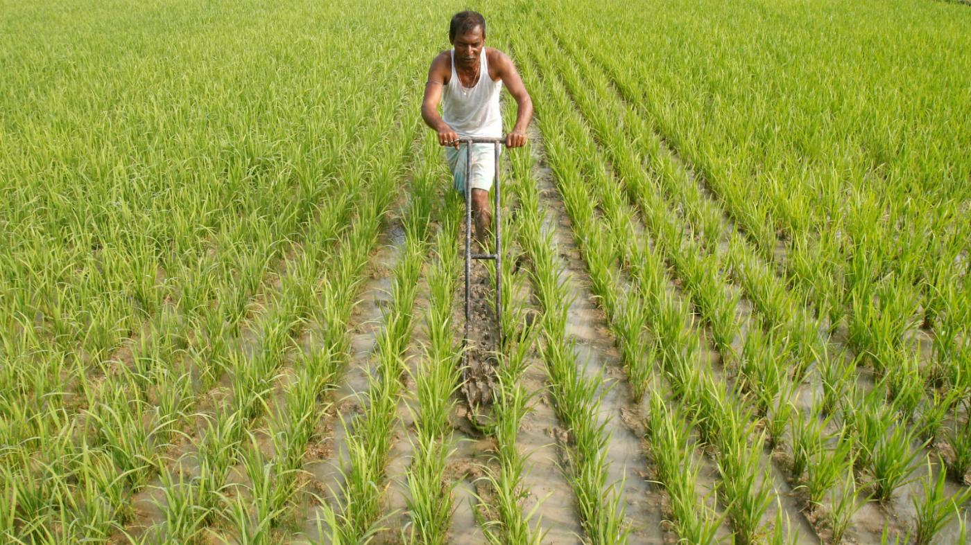 India's farmers aren't all the same, but government ...