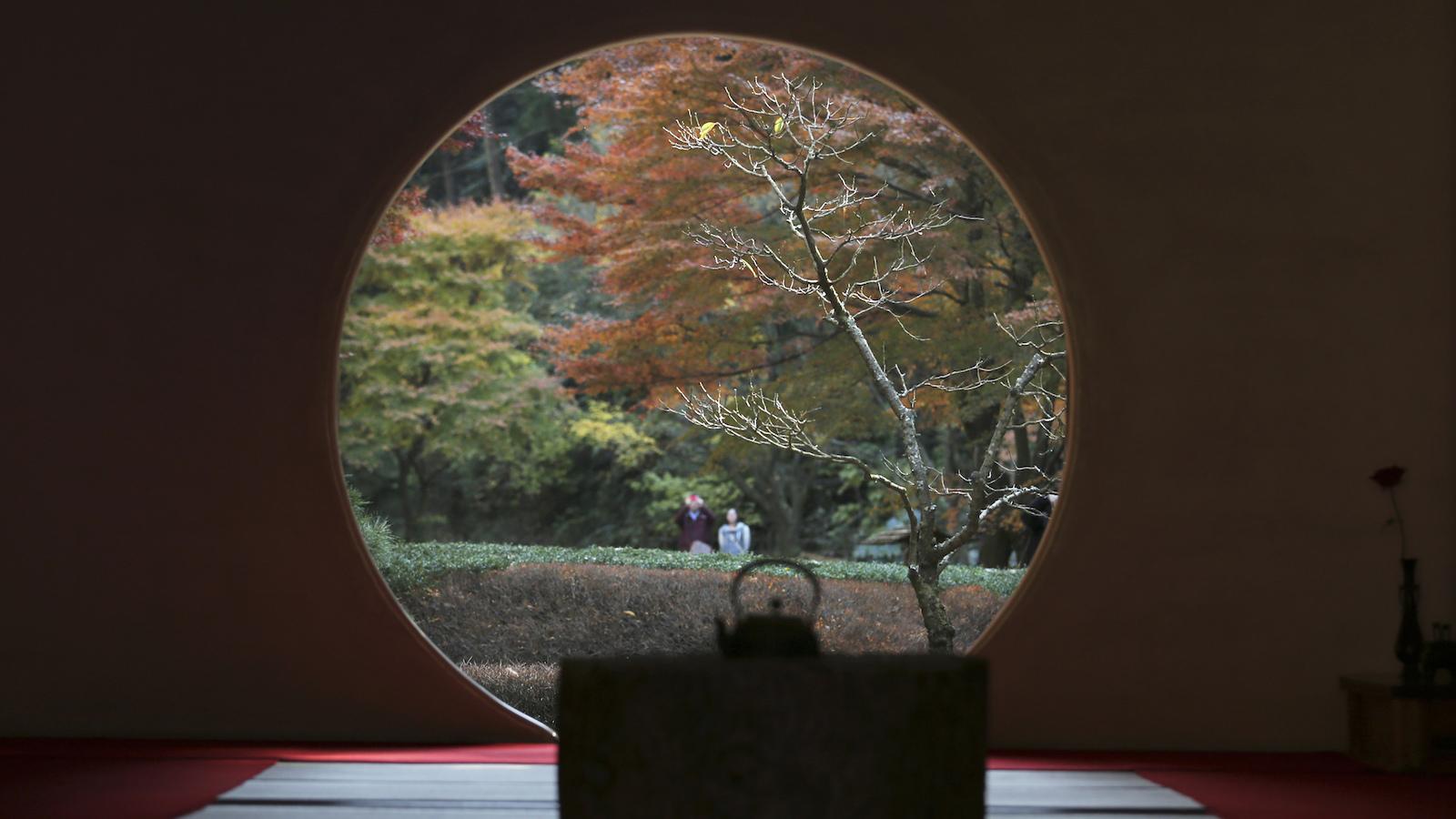 japan window autumn