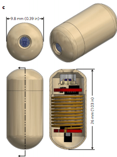 The size of the gas-detecting capsule.