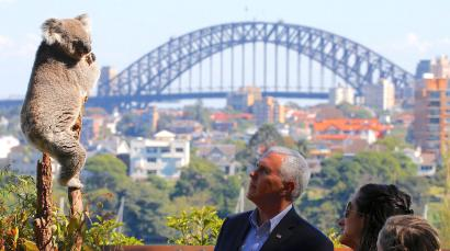 Mike Pence looking at a koala in Sydney, Australia