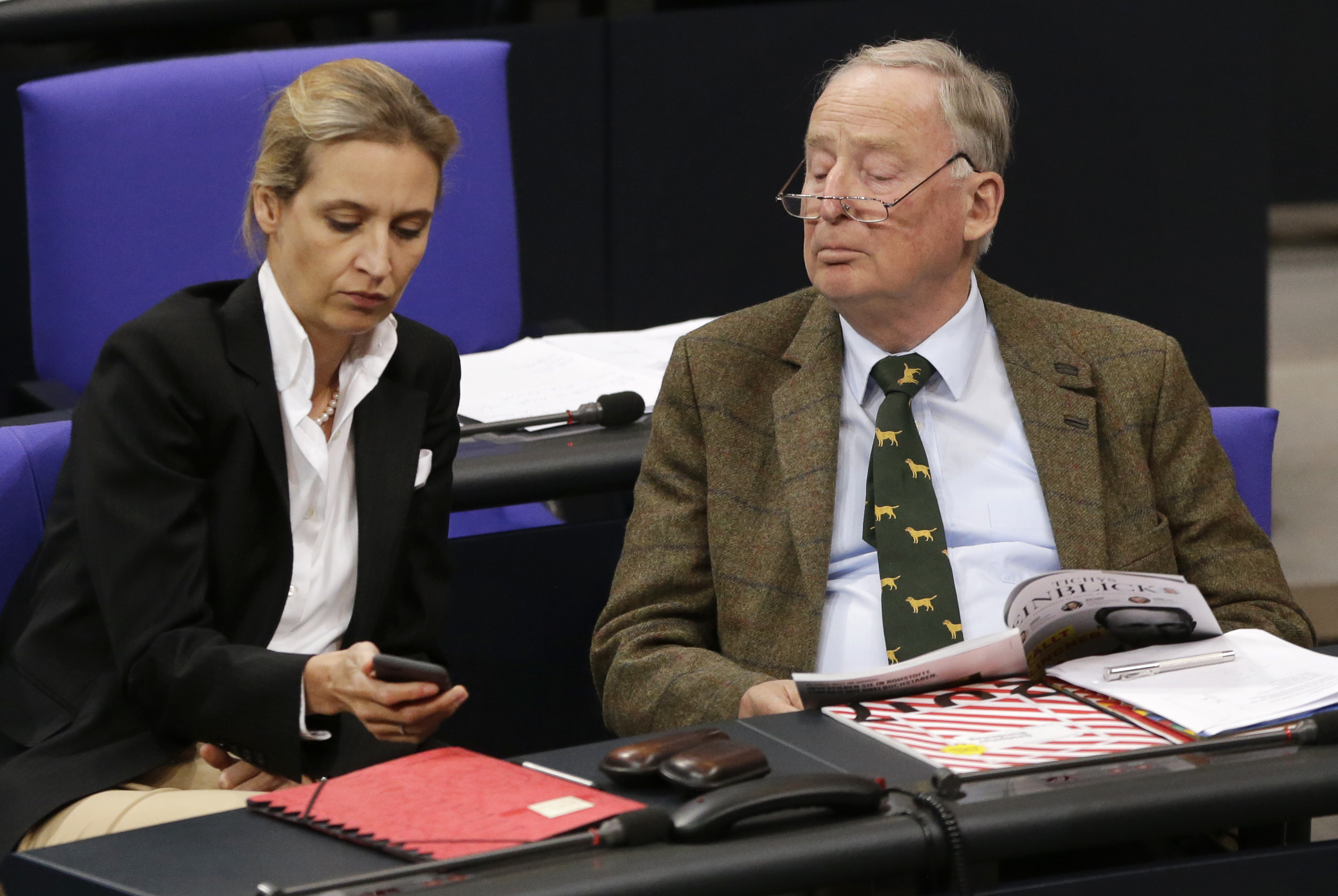 Alice Weidel and Alexander Gauland, parliamentary leaders of the Alternative for Germany.