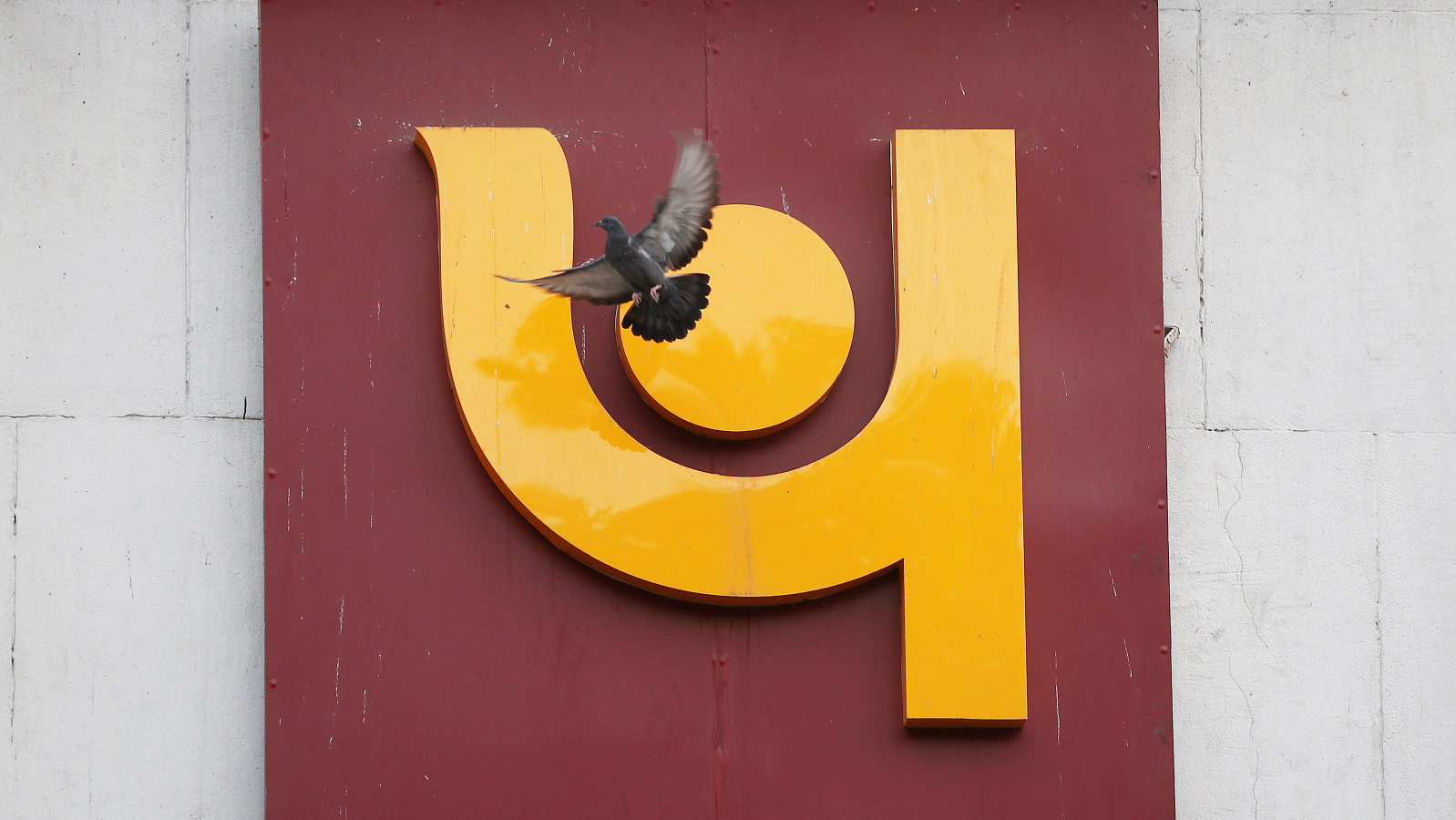 A pigeon flies past the logo of Punjab National Bank outside a branch of the bank in New Delhi, India February 15, 2018.