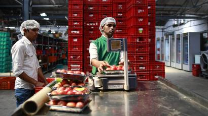 As India's e-commerce sector reels back, grocery tech is