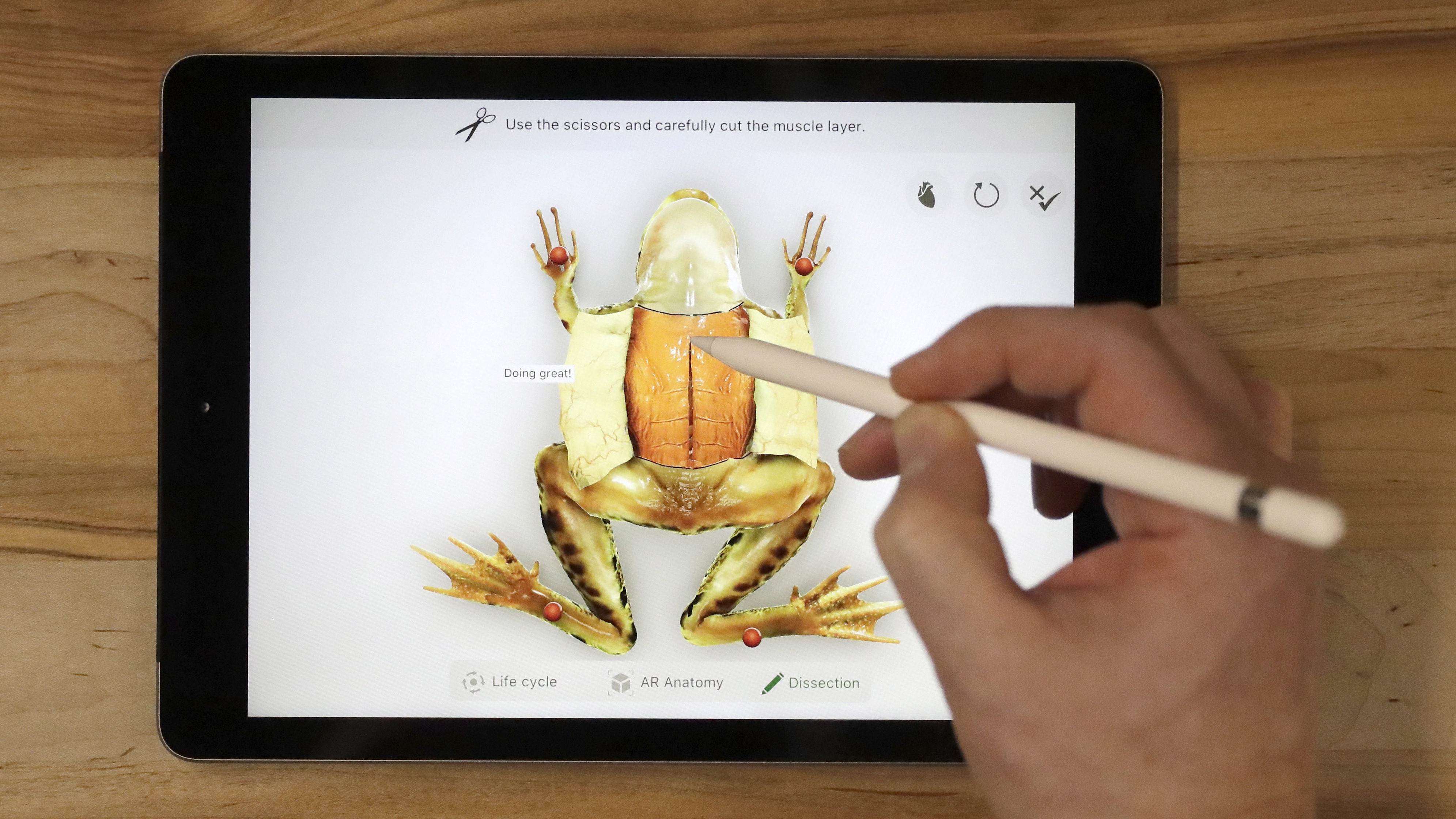 A demonstration of the Froggipedia App using the Apple Pencil on the new 9.7-inch iPad is performed at an Apple educational event at Lane Technical College Prep High School, Tuesday, March 27, 2018, in Chicago. (AP Photo/Charles Rex Arbogast)