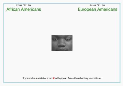 Implicit Association Test screenshot