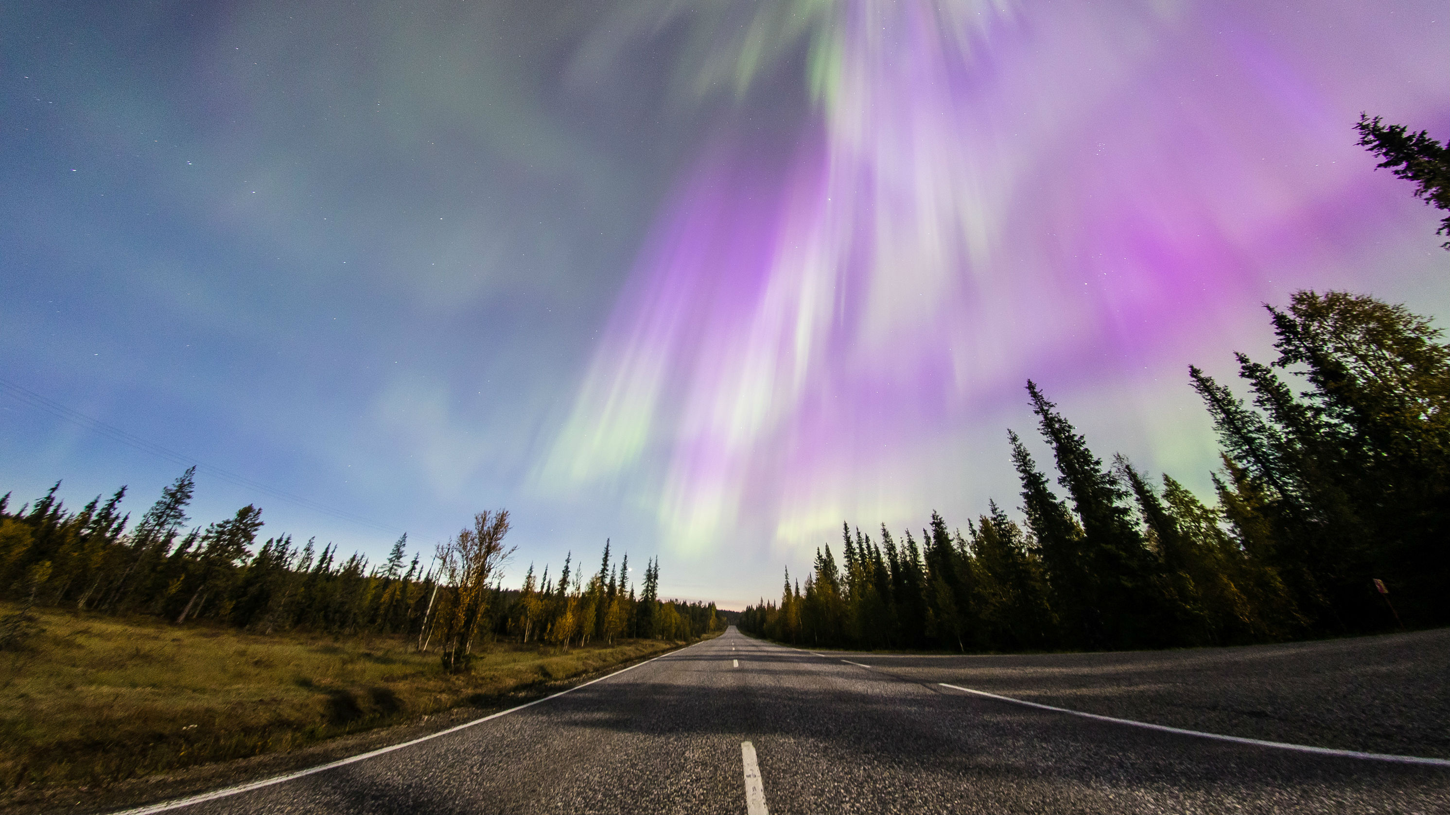 A picture of a road with the northern lights above it.