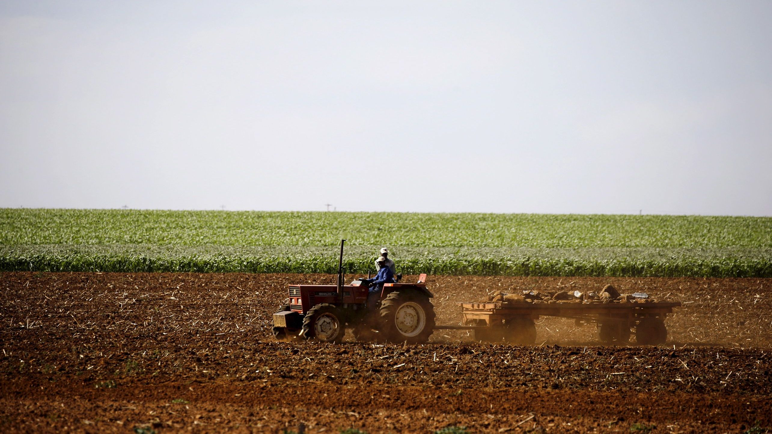 History tells us South Africa's land expropriation debate has no easy solution