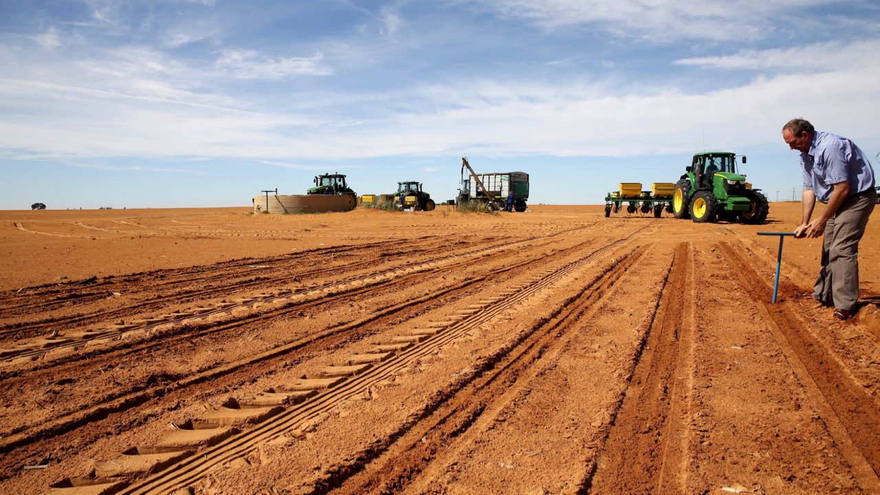 Expropriation without compensation: South Africa's land debate overtaken by racism