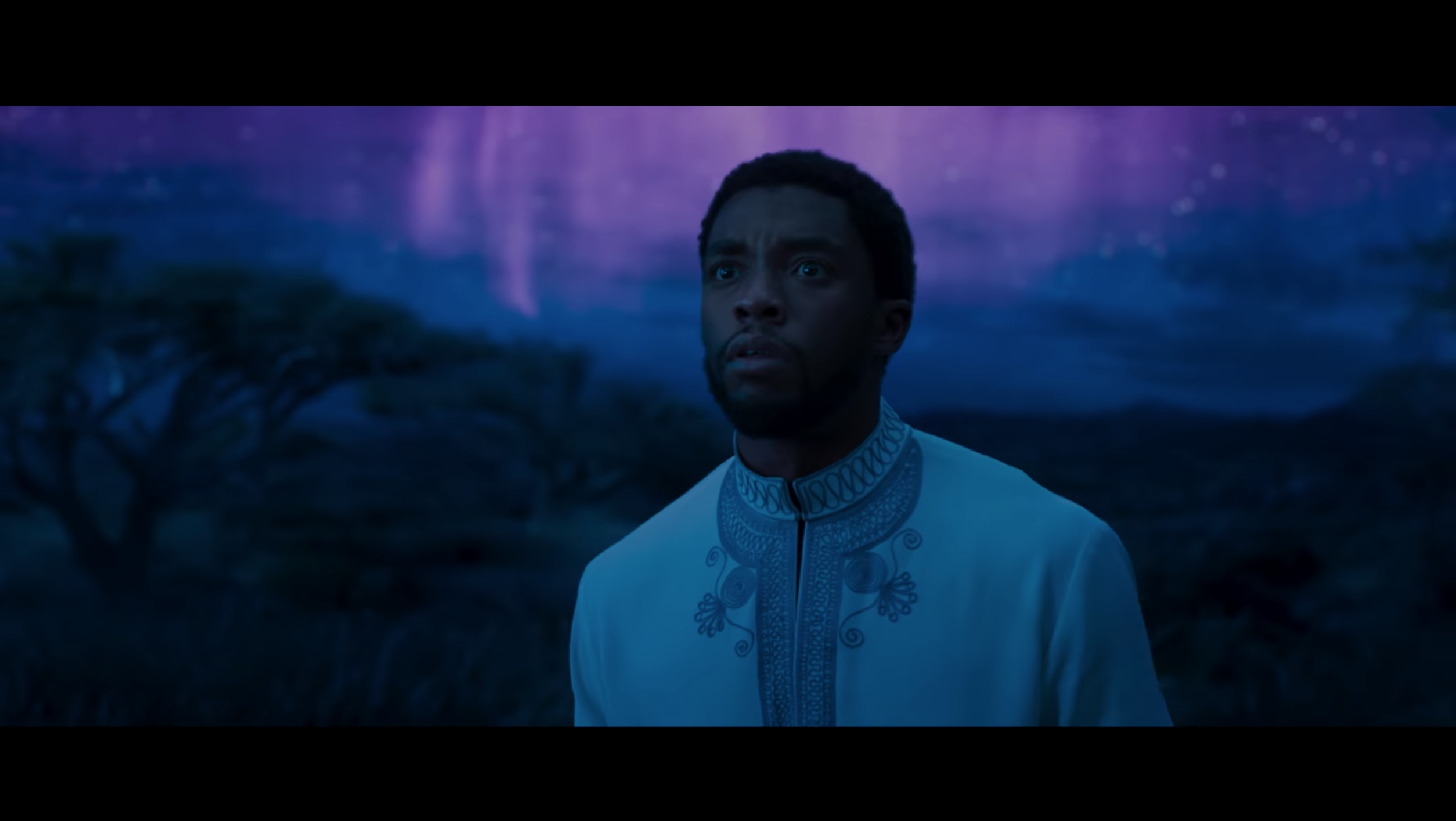 King of Wakanda in Marvel's movie Black Panther.