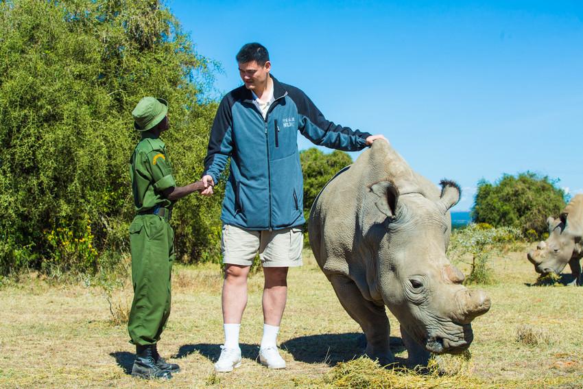 The last male northern white rhino has died — Quartz Africa
