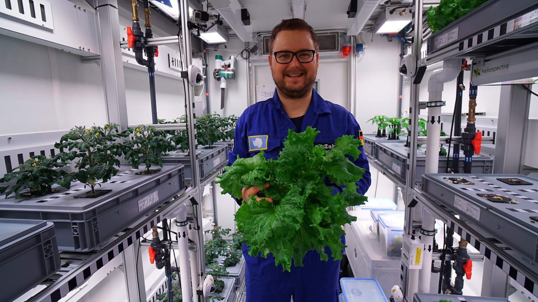 Scientists grew the first vegetables in Antarctica without soil or sunlight