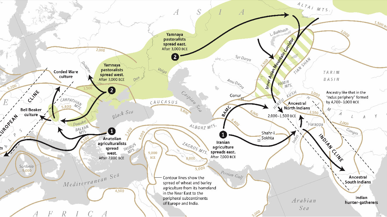 Aryan migration: Scientists use DNA to explain origins of ancient