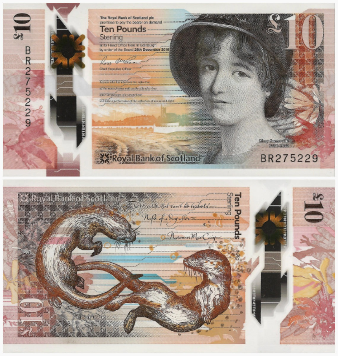 collage scottish pound_colorcorrected