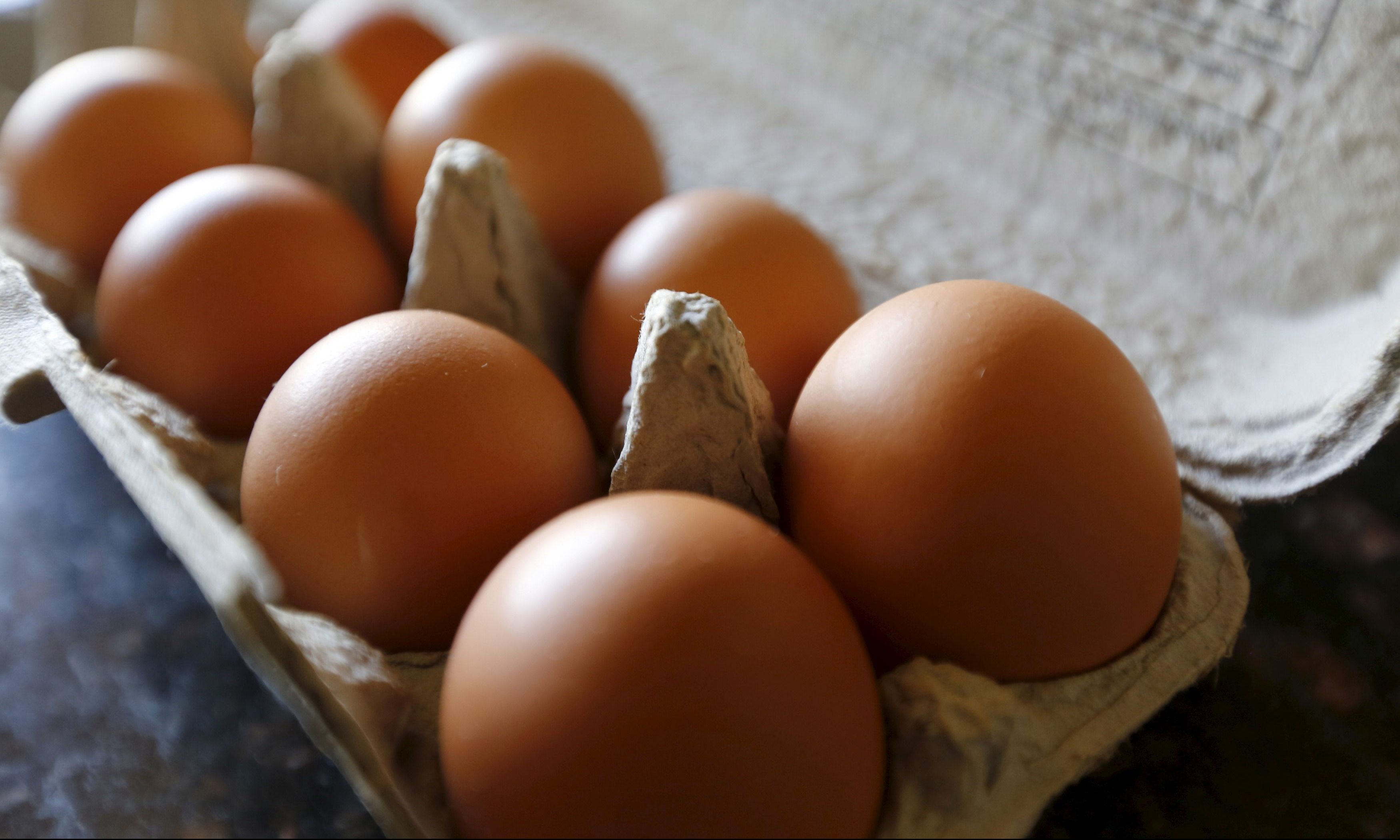 Egg recall on salmonella fears