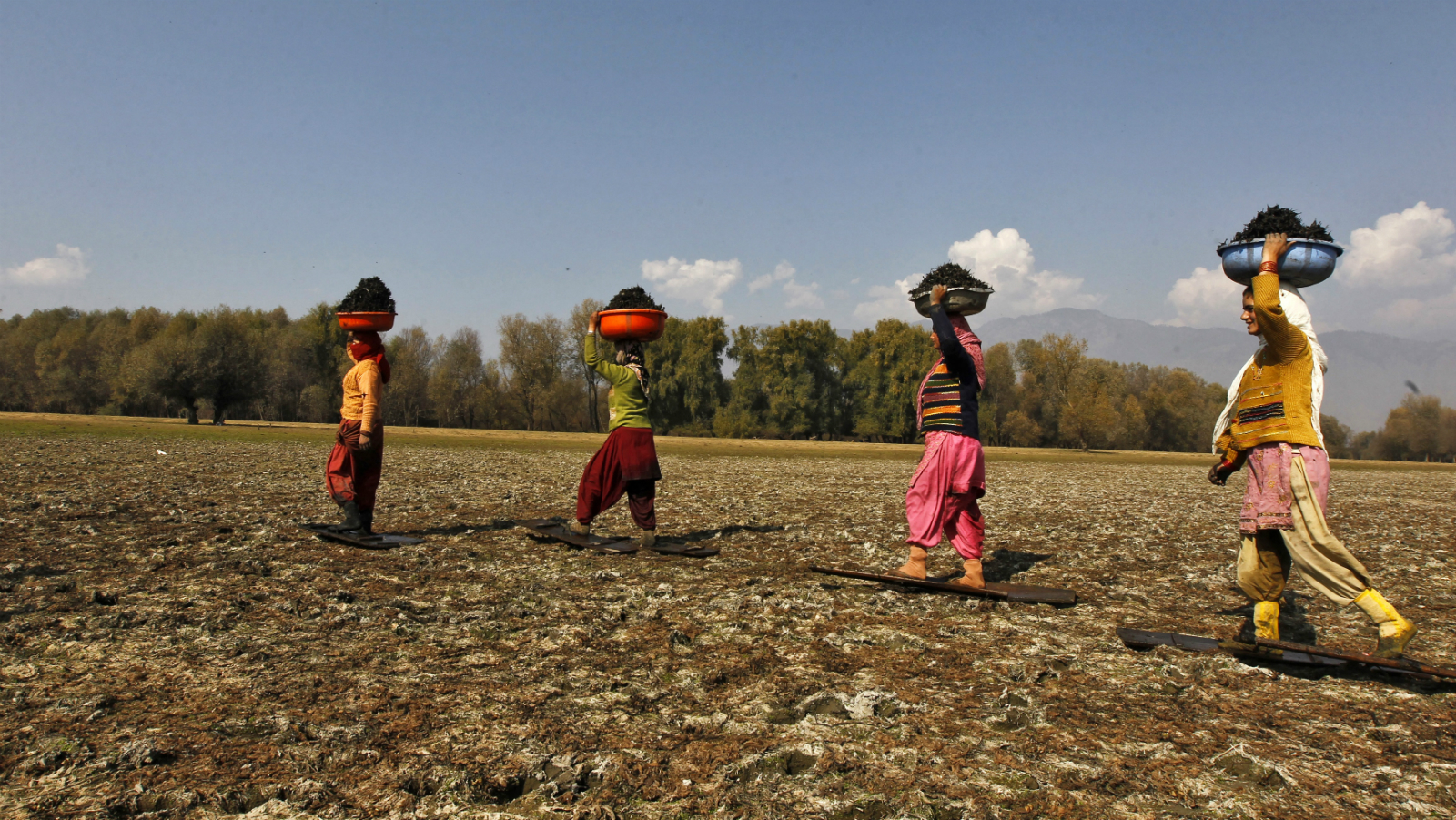 """Kashmiri village women carry baskets filled with water chestnuts after collecting them from the waters of Wular Lake as they walk over the marshy land while wearing wooden boards on foot at Bandipora, about 65 km (40 miles) north of Srinagar, November 5, 2012. Water chestnuts are locally known as """"Singada"""" and are eaten raw, boiled or are grounded into flour after they are dried. Picture taken November 5, 2012."""