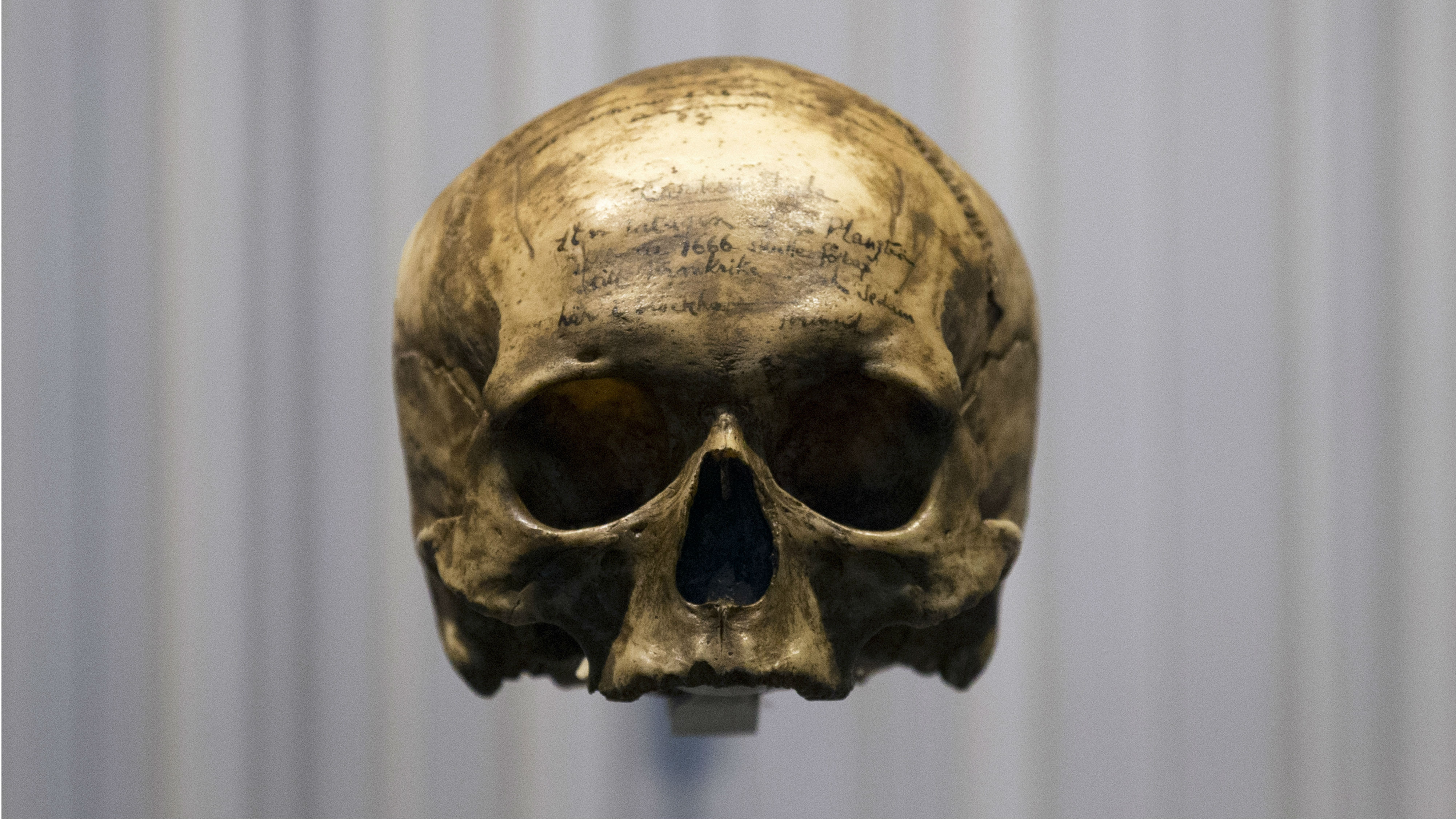 The skull of French philosopher Rene Descartes (1596-1650), top left, is displayed during a press visit at the Museum of Mankind (Musee de l'Homme) in Paris, France, Wednesday, Oct. 14, 2015. Among the thousands of objects and artifacts include the skull of Neanderthal man and of a French philosopher Rene Descartes, the museum, dedicated to anthropology, ethnology and prehistory of human evolution, will open to the public this weekend after six years of renovation.