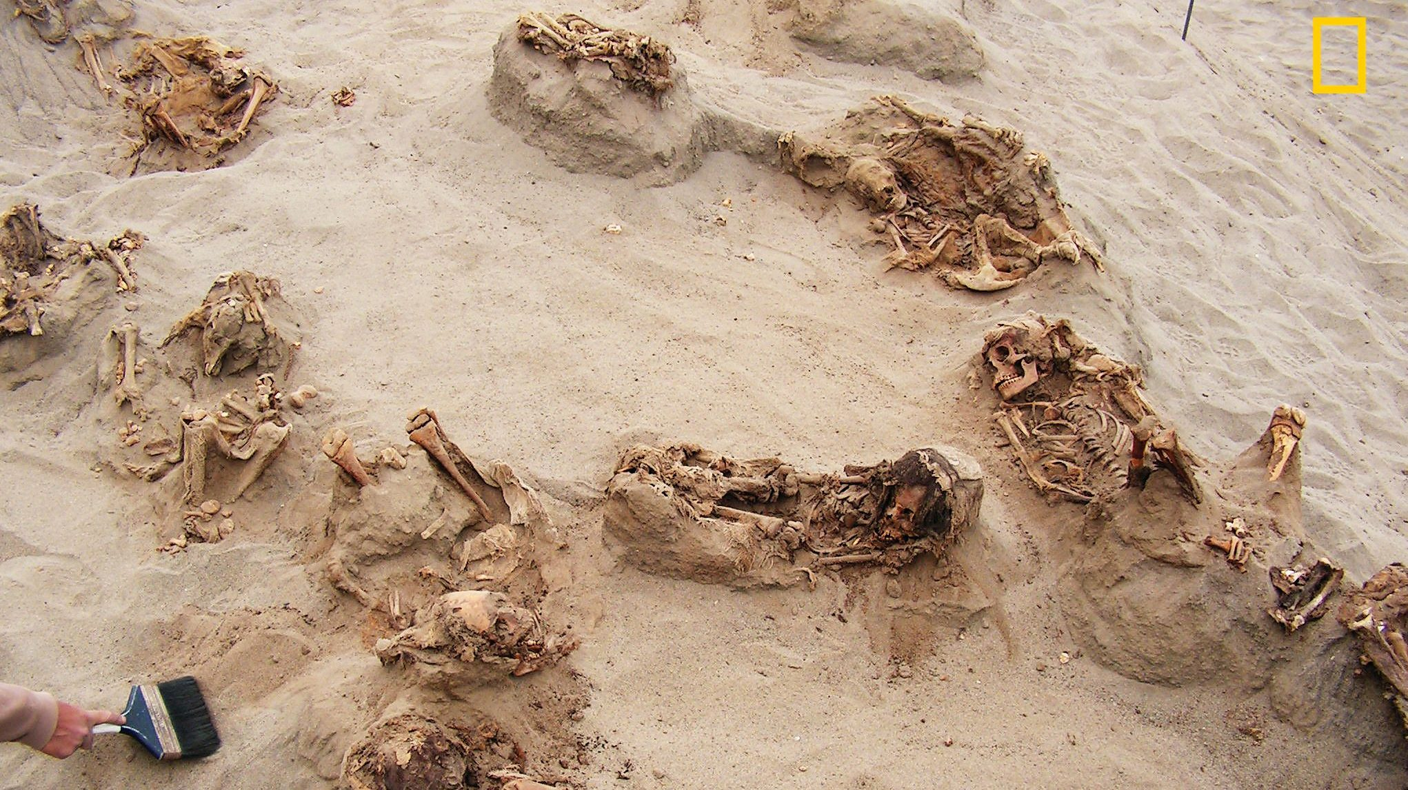 Children Killed In History's Largest Mass Sacrifice Unearthed In Peru