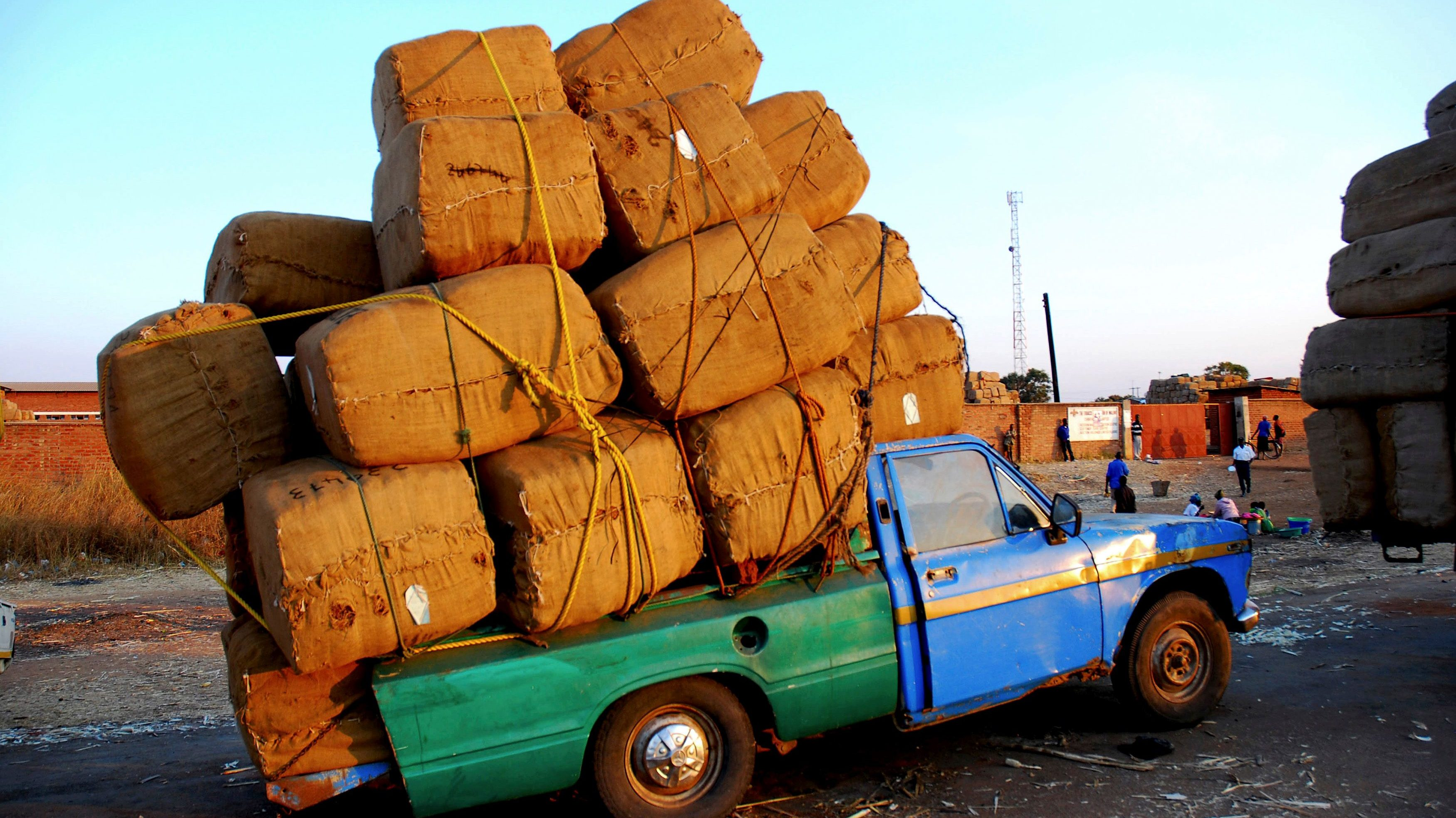 A pick-up truck carrying tobacco bales arrives at the auction floors in central Malawi district of Kasungu