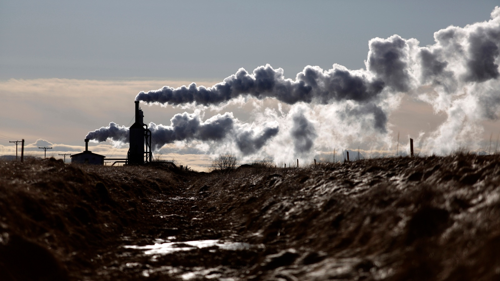 qz.com - Michael J. Coren - This is the year oil companies finally invest in geothermal