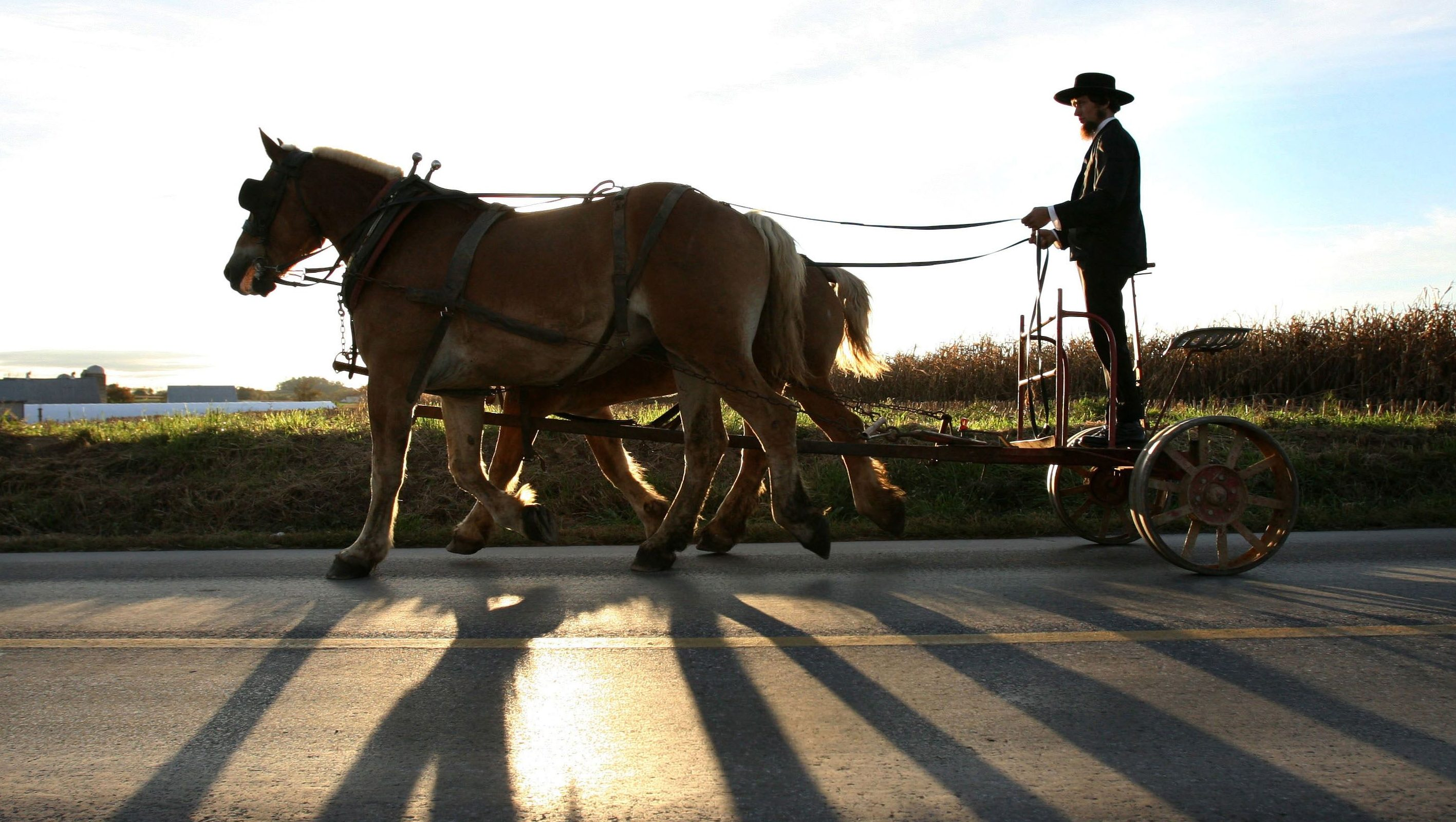 An Amish man rides his cart down Mine Rd to a funeral ceremony for victims of the Amish school shootings in Nickel Mines, Pennsylvania, October 5, 2006. The Amish community prepared for the funerals of the victims of Monday's schoolhouse shooting in Nickel Mines.        REUTERS/Jason Reed    (UNITED STATES) - GF2DTQROINAA