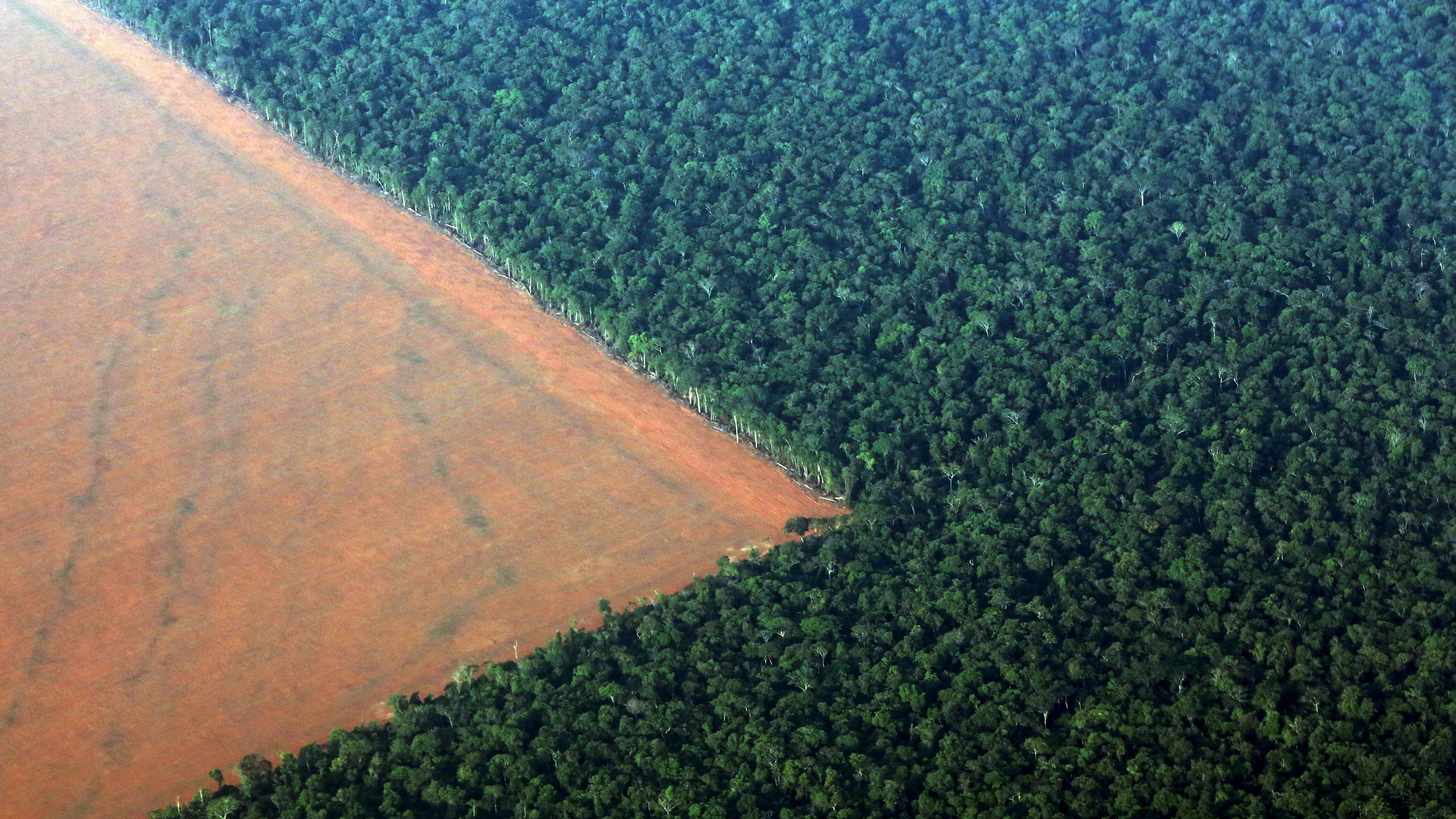 The Amazon rain forest (R), bordered by deforested land prepared for the planting of soybeans, is pictured in this aerial photo taken over Mato Grosso state in western Brazil, October 4, 2015. Brazil will produce a record 97.8 million tonnes of soybeans in 2015/16, a 3.2 percent rise compared to 2014/15, but much of this additional volume will be stored in the country, with little impact on export volumes, estimated on Monday the Brazilian Association of Vegetable Oil Industries (ABIOVE).  Picture taken October 4, 2015.