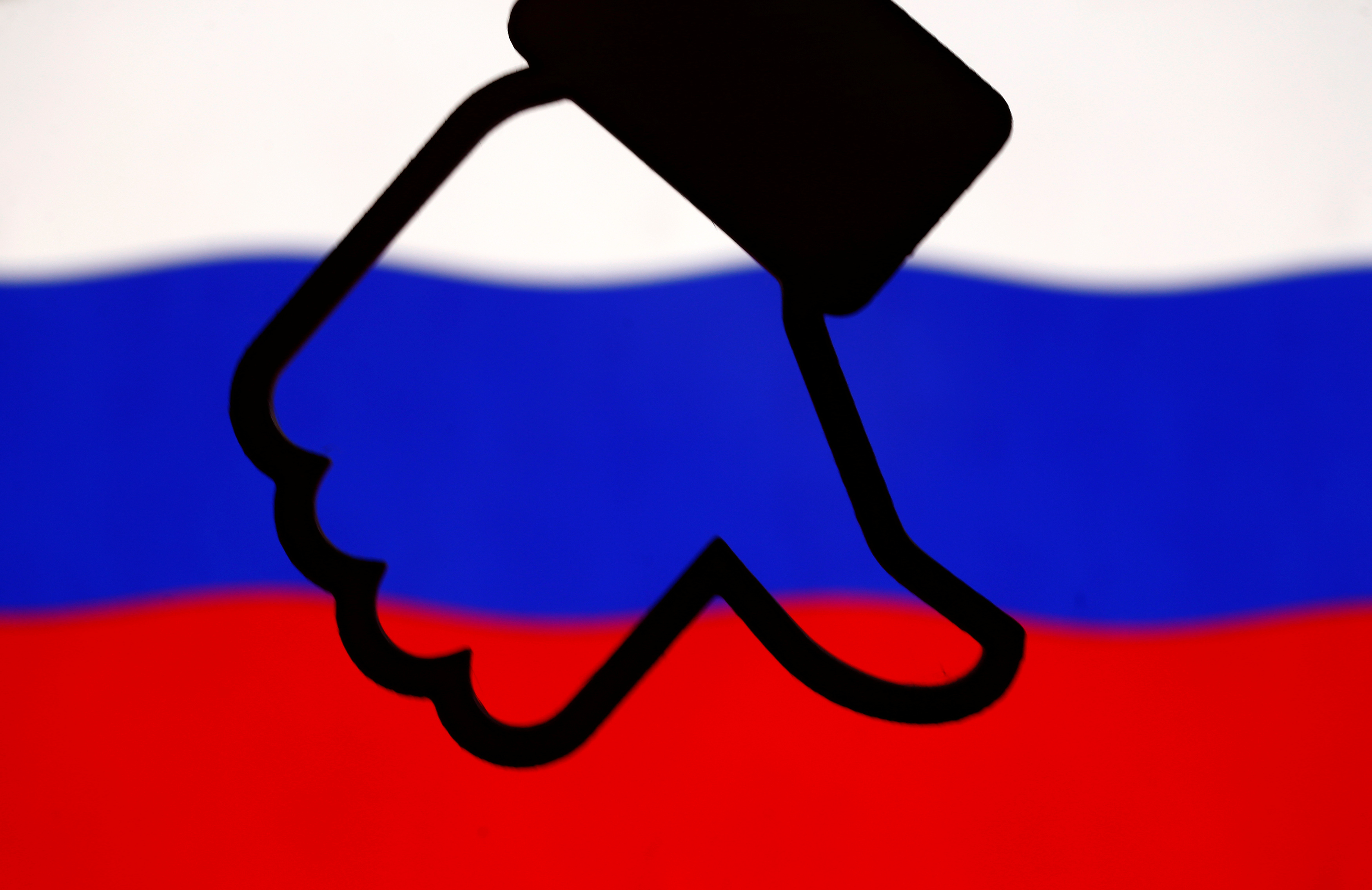 Russian Senators Call on Facebook's Zuckerberg to Testify on Privacy
