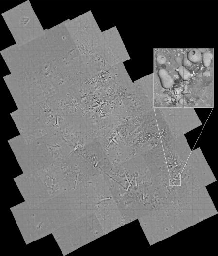 A gridded mosaic of images taken by the REMUS 6000 shows the complete wreck site.