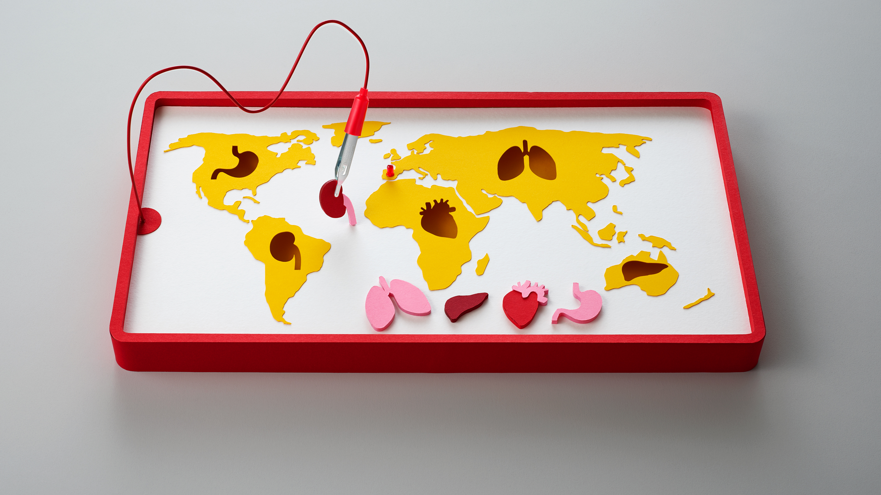 Spain leads the world in organ donation. What\'s stopping other ...