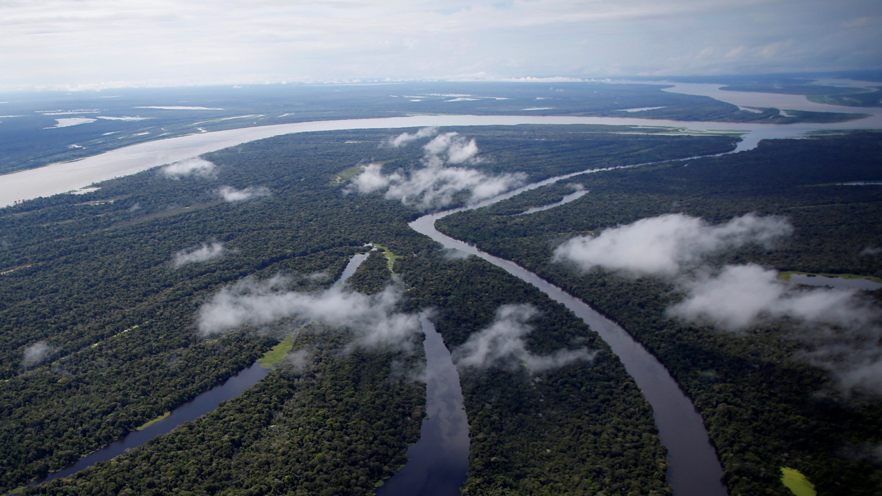 "The Mamiraua Sustainable Development Reserve is seen in Uarini, Amazonas state, Brazil, May 16, 2016. REUTERS/Bruno Kelly     SEARCH ""JAGUARS AMAZON"" FOR THIS STORY. SEARCH ""WIDER IMAGE"" FOR ALL STORIES. - RC143C9BBCB0"