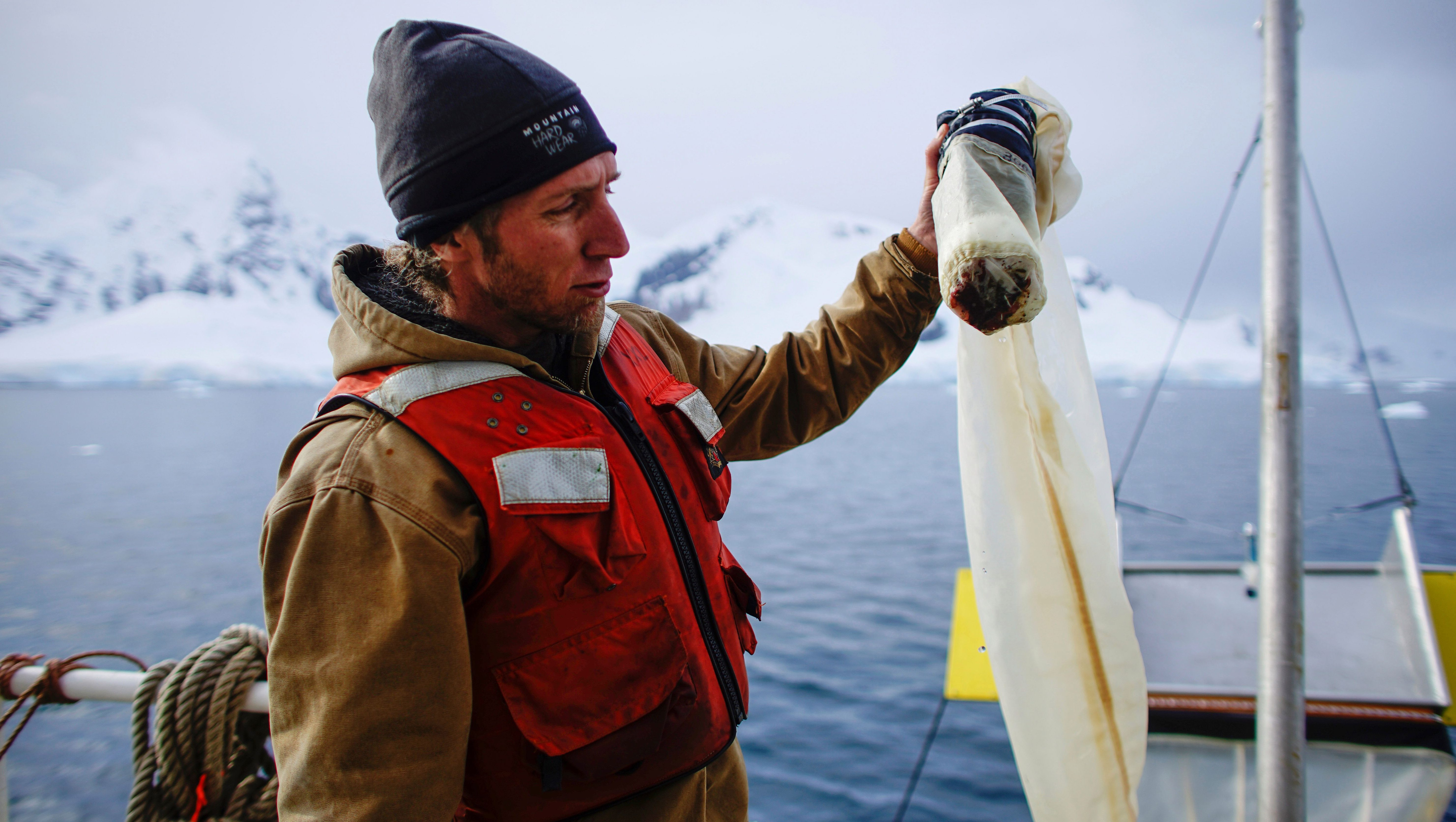Greenpeace activist Grant Oakes shows a water sample collected using a manta trawl in Neko Harbour, Antarctica, February 16, 2018. Picture taken February 16, 2018. REUTERS/Alexandre Meneghini - RC1B04B8EB50