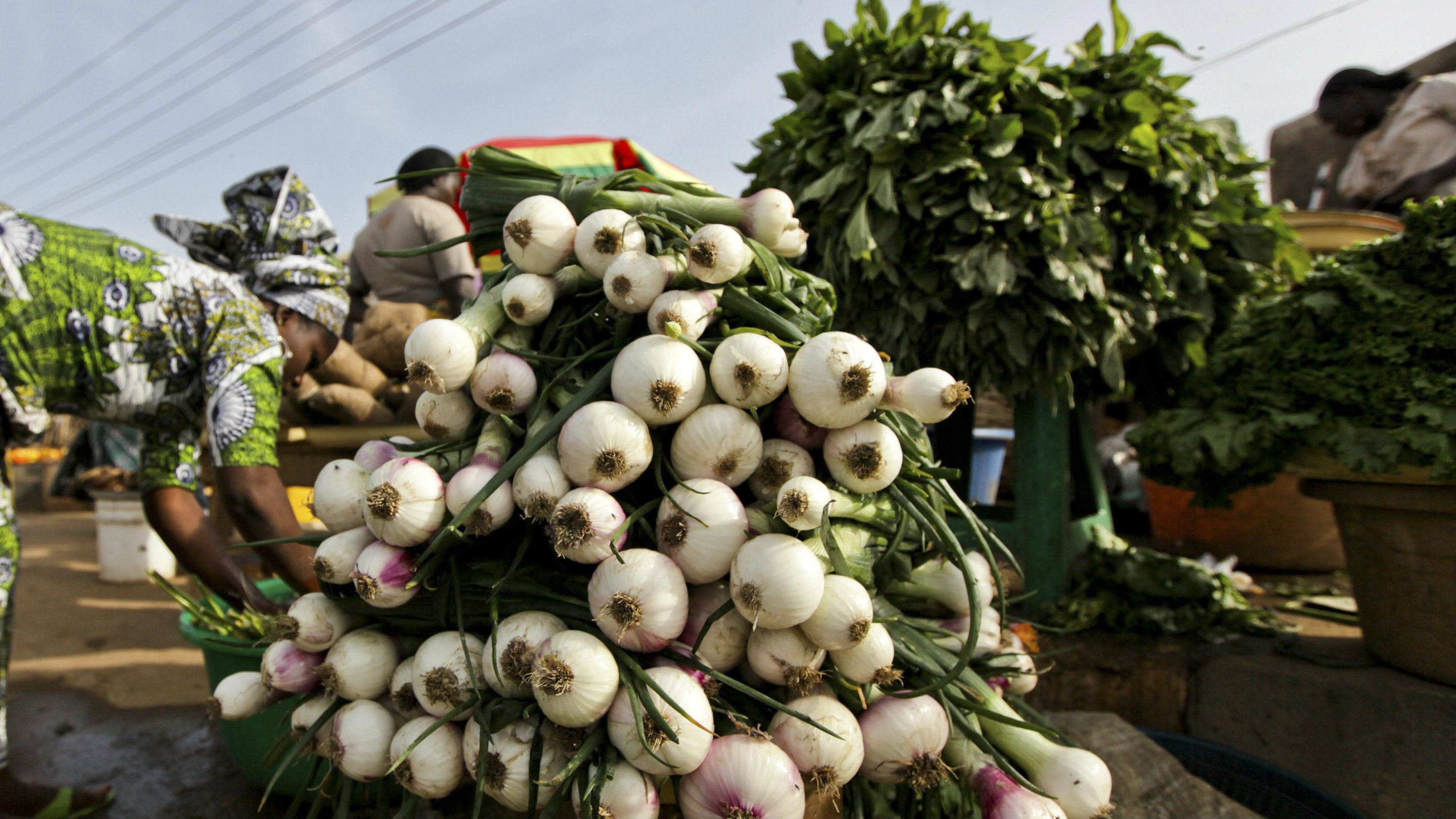 Scallions are displayed at a local food market in Nigeria's central city of Jos February 15, 2011. More than 200 people have been killed in sectarian violence in and around Jos since a series of bombs shattered Christmas Eve celebrations almost two months ago. The economy of Plateau state, of which Jos is the capital, had relied on the fruit and vegetable it supplies to cities across Africa's most populous nation, and on tourism, after mining and manufacturing firms scaled down or moved away. Rivalry for scant economic opportunities combined with local government policies that have actively discriminated against non-indigenes have fuelled divisions. Picture taken February 15, 2011