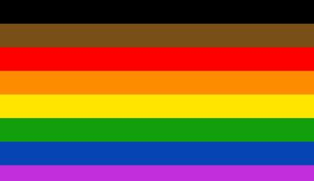 Pride Rainbow Flag 8 Stripes Colors Brown Black 3 x | Etsy