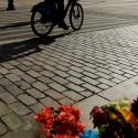 A bicyclist passes a memorial for pedestrians and bikers that were killed.
